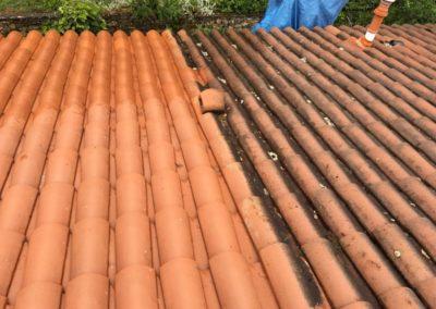 nettoyage toit à Lyon